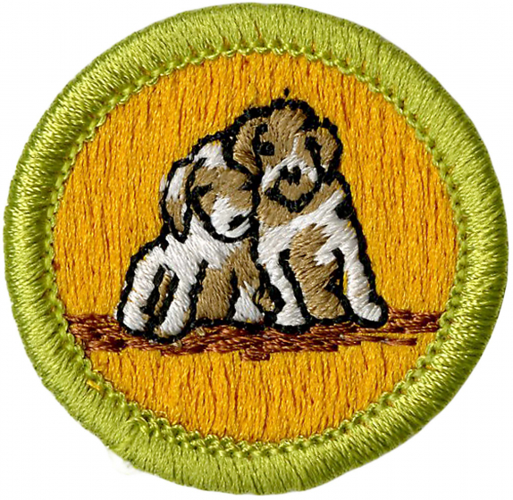 Dog Care Merit Badge | Boy Scouts of America
