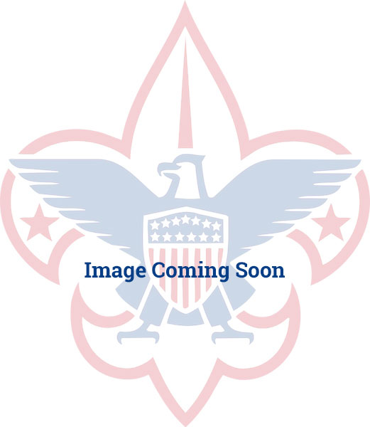 BSA/USA Crossed Flags Hat Pin
